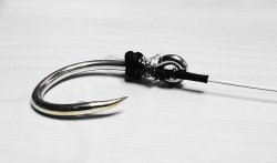 画像1: 泳がせ釣り仕掛け ハリス60号3.5m×針インターフックGT30号錫カラー